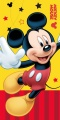 Osuška Mickey 2015